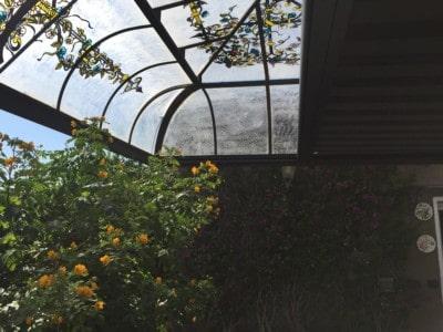 Tende da sole per giardini d'inverno Markilux 8800