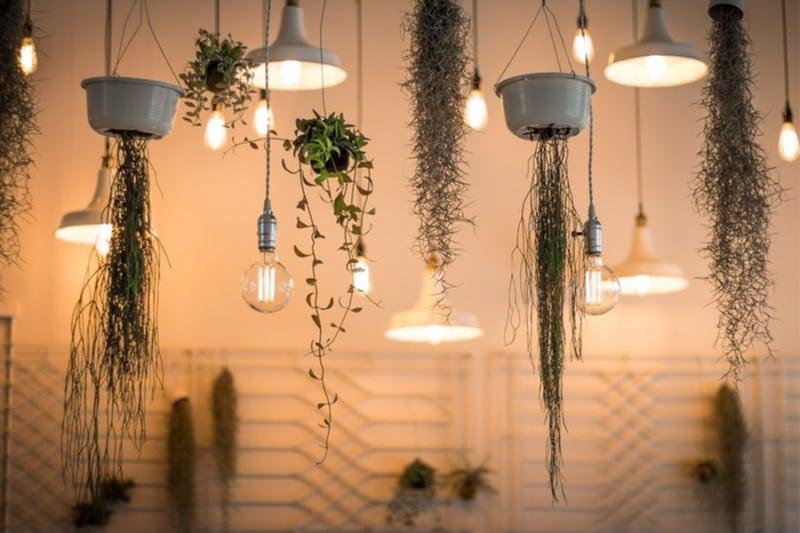 illuminazione giardino ed interni