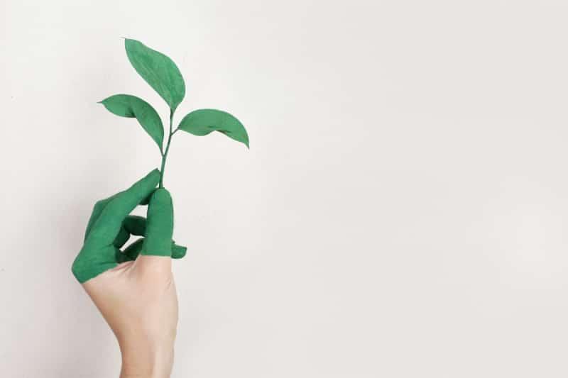 Qualità ed ecologia contro risparmio e consumismo